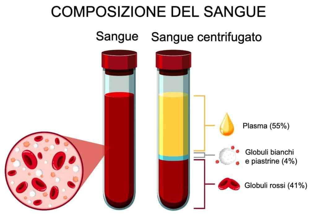 Plasma sanguigno - metodo PRP